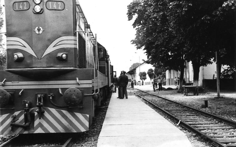 Композиција са дизел локомотивом